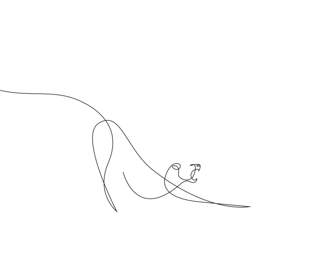 3-animal-kingdom-differantly-minimalist-one-line-illustrations
