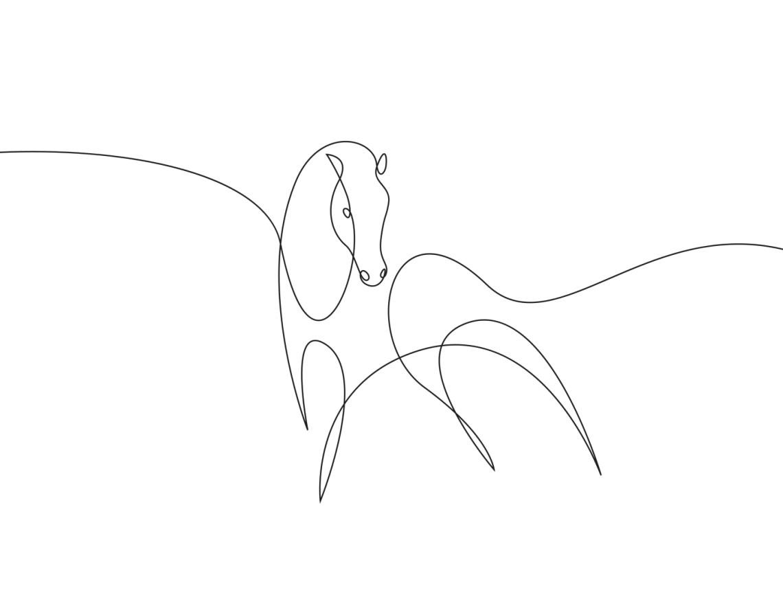 5-animal-kingdom-differantly-minimalist-one-line-illustrations